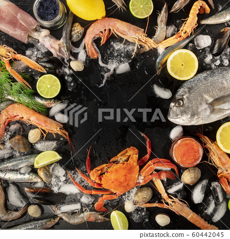 Fish and seafood variety, a square flatlay top shot, a frame with copy space on a dark background. Sea bream, shrimps and prawns, crab, sardines, squid, mussels and other fresh products on ice 60442045