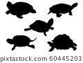 동물 실루엣 애완 동물 거북이 60445203