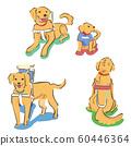 Labrador Redriver Guide Dog Set Illustration 60446364