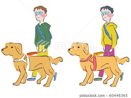 拉布拉多領隊導盲犬設置圖 60446365