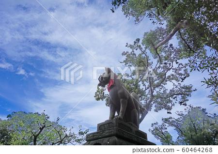 伏見稻荷神社守護犬 60464268