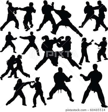 Karate silhouette vector 60485514