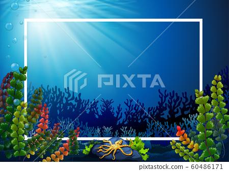 Border template with seaweeds underwater 60486171