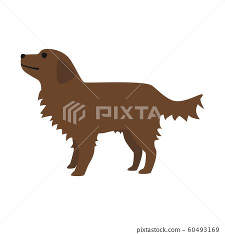 狗的插圖。一隻小型臘腸狗。 60493169