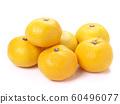 橘子 60496077