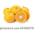 橘子 60496078