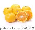 橘子 60496079