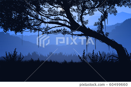 Natural forest trees mountains horizon hills Sunrise and sunset Landscape wallpaper Illustration vector style Colorful view background 60499660