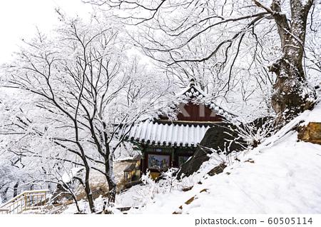 산사의 겨울 풍경 60505114