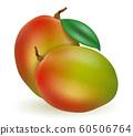 mango fresh ripe exotic fruit vector illustration 60506764