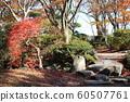 Autumn leaves of Chiaki Park 60507761