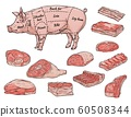 Butchery store banner with pork meat parts, vector sketch illustration isolated. 60508344