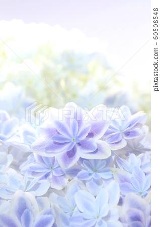 Background material Hydrangea Kaleidoscope Aoka 60508548