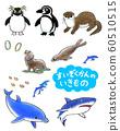 Aquarium creatures 60510515