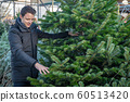 man selects a christmas tree on the markets before Christmas Eve 60513420