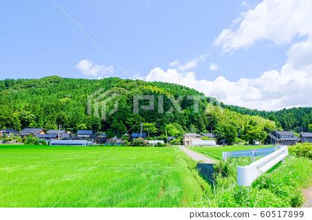 여름의 시골 풍경 60517899