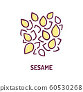 Sesame seeds color line icon. Spices, seasoning. 60530268