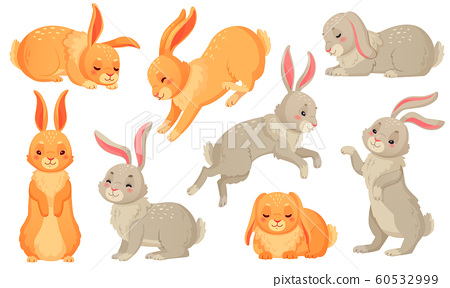Cartoon bunny. Rabbits pets, easter bunnies and plush little spring rabbit pet isolated vector illustration set 60532999