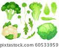 Cartoon cabbages. Fresh lettuce leaves, vegetarian diet salad and healthy garden green cabbage. Cauliflower head vector illustration 60533959