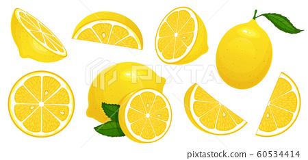 Lemon slices. Fresh citrus, half sliced lemons and chopped lemon isolated cartoon vector illustration set 60534414