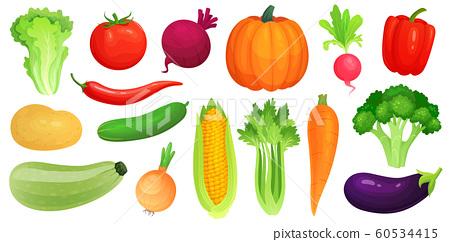 Cartoon vegetables. Fresh vegan veggies, raw vegetable green zucchini and celery. Lettuce, tomato and carrot vector illustration set 60534415