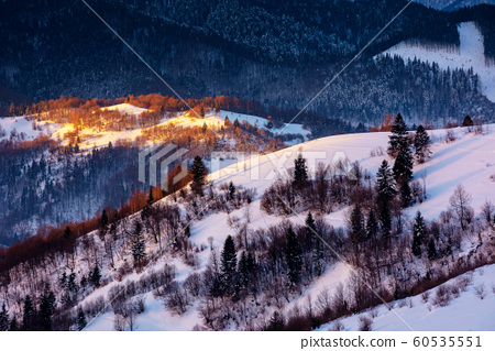 winter countryside scenery at dawn 60535551