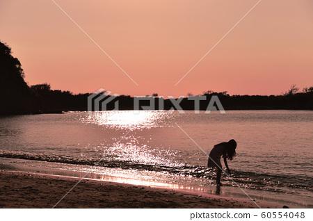 海灘 60554048