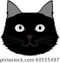 Black cat 60555497
