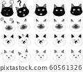 White cat black cat nora cat siamese cat emotion expression black cat white siamese 60561326