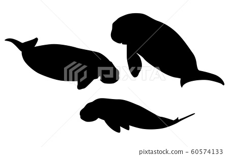 動物剪影海和儒艮河 60574133