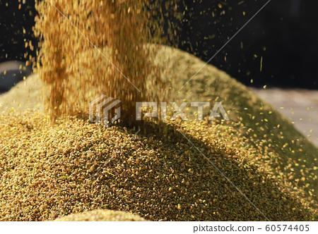 收割機倒下剛收割完的穀子 60574405