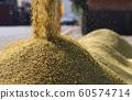 收割機倒下剛收割完的穀子 60574714