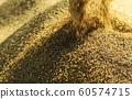 收割機倒下剛收割完的穀子 60574715