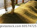收割機倒下剛收割完的穀子 60574725