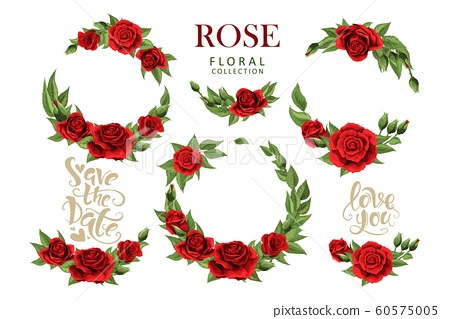 Red roses hand drawn illustration elements colored set isolated on white 60575005