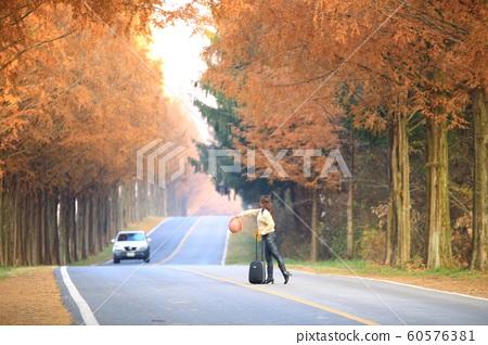 아름다운길,가을여행,모래재 60576381
