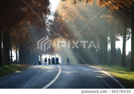 아름다운길,가을여행,모래재 60576430