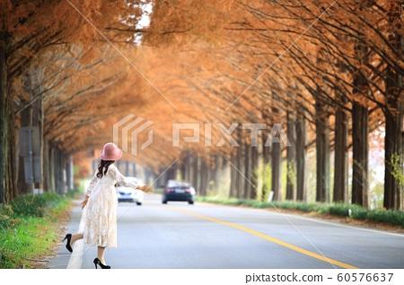 가을여행,메타길,아름다운길 60576637