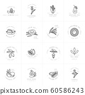 Vector set design templates and emblems - healthy and cosmetics oils. Different natural, organic oils. 60586243
