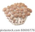 Bunamemeji mushroom hand-painted watercolor 60600776