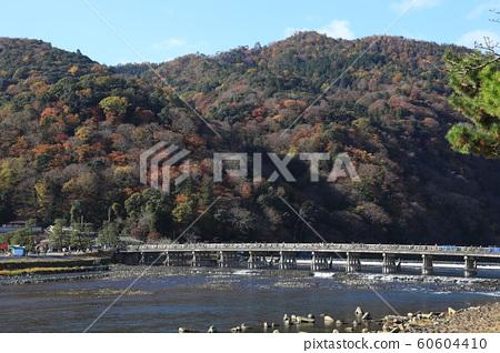 Kyoto Arashiyama Togetsukyo colored leaves 60604410