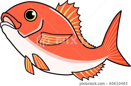 Sea bream bouncing 60610465