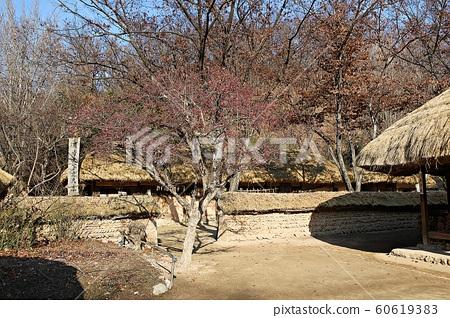 한국민속촌 60619383