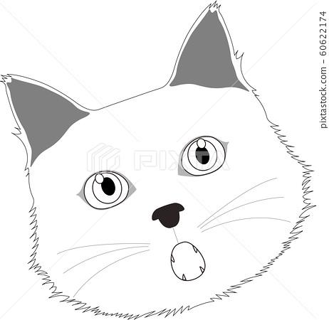 驚訝的白色貓 60622174