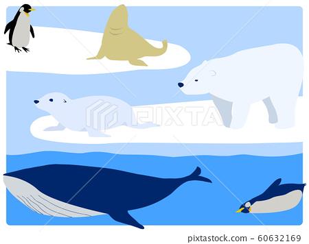 流冰,北極熊,企鵝,海獅,海狗和鯨魚 60632169