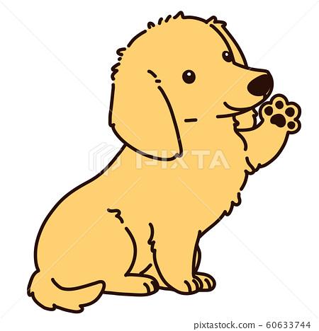 臘腸犬坐著揮手 60633744