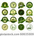 big vector collection of colorful olive labels 60635009