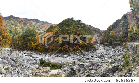 백담사,백담계곡,설악산,인제군,강원도,한국 60636567