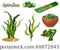 Seaweed spirulina, superfood dietary supplement 60672643