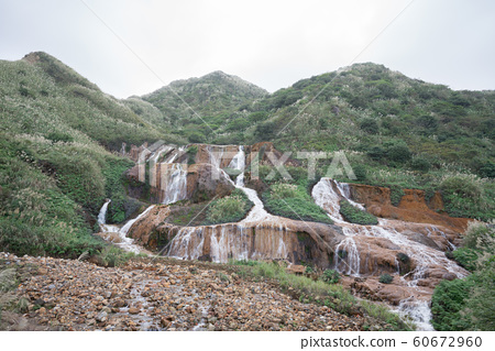 [Taiwan] Golden cloth 60672960